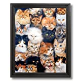 Cat Kittens Kitty Collage Kids Room Wall Picture Black Framed Art Print