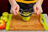 Deiss® ART Apple Slicer & Corer Set - Cutter, Wedger, Divider - Razor-sharp Stainless Steel Blades with Ergonomic Non-Slip Handles - Durable Construction - Dishwasher Safe