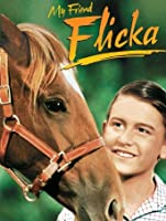 My Friend Flicka [HD]
