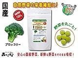 国産野菜まるごとサプリ【ブロッコリー】[250mg×180粒 2個セット]