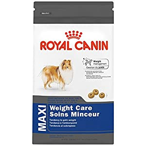 ROYAL CANIN FELINE HEALTH NUTRITION MAXI WEIGHT CARE dry dog food, 30-Pound