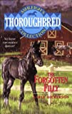 img - for The Forgotten Filly (Thoroughbred Club) book / textbook / text book