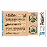 Queen Games 60863 - Kingdom Builder: Erweiterungsmodul 1: Kapitol