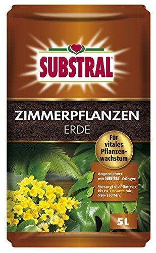 piante-dappartamento-substral-terra-10-l