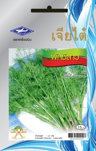 Dill (3300 Seeds) Seeds - 1 Package From Chai Tai, Thailand (Juicing Package compare prices)