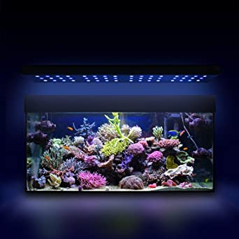esmart germany sea nemo 3 aquariumbeleuchtung f r salzwasser 144w programmierbar. Black Bedroom Furniture Sets. Home Design Ideas