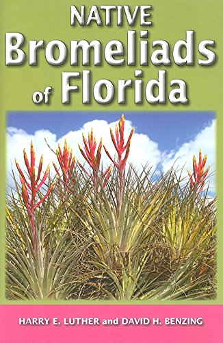 Native Bromeliads of Florida