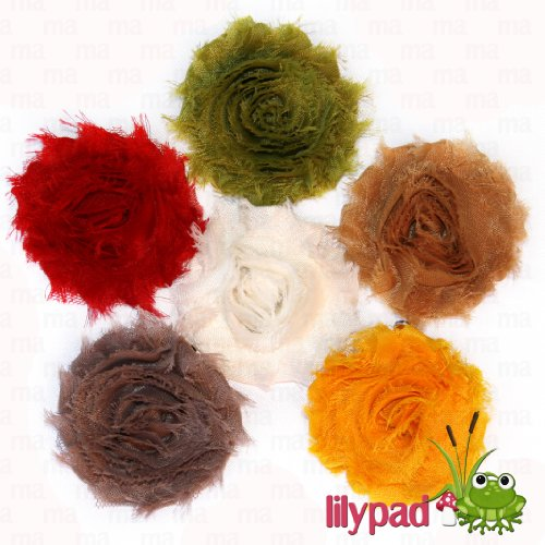 Autumn 6 Piece Frayed Shabby Chick Rose Hair Flower Clips (2.5 Inches) front-775195