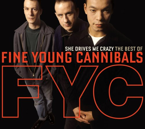 Fine Young Cannibals - She Drives Me Crazy: Best of Fine Young Cannibals - Zortam Music