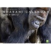 SHABANI CALENDER(シャバーニカレンダー) 2016.1~2017.3