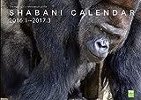 SHABANI CALENDERシャバーニカレンダー