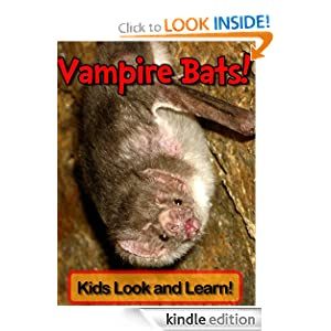 Vampire Bats! Learn About Vampire Bats and Enjoy Colorful Pictures - Look and Learn! (50+ Photos of Vampire Bats)