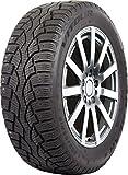 Vitour Polar Bear S Winter Radial Tire - 205/55R16  91T