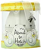 """Kate Aspen """"About To Hatch"""" Kitchen Egg Timer in Showcase Gift Box, Yellow"""