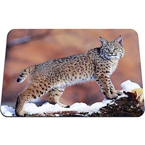 bobcat- Mouse Pad - Gaming Mouse Pad - 8.6