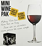 Mini Wine Pak (Sauvignon Blanc)
