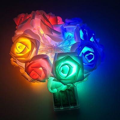 CM-Light 2M 20LED Christmas Wedding Flower Rose Fairy String Lights Lamp Indoor/Outdoor