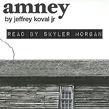 Amney Audiobook by Jeffrey Koval Jr. Narrated by Skyler Morgan