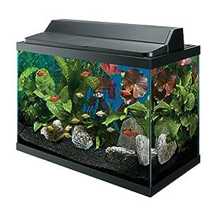 All glass aquarium aag10029 tank 29 gallon for Fish tank decorations amazon