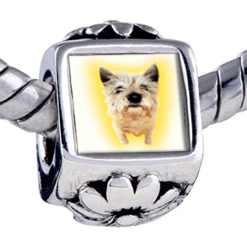 Pugster Bead Norwich Terrier Beads Fits Pandora Bracelet