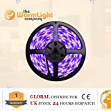 IP65 3528 5M 300 LEDs Purple Strip Light