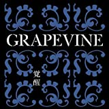 through time♪GRAPEVINE