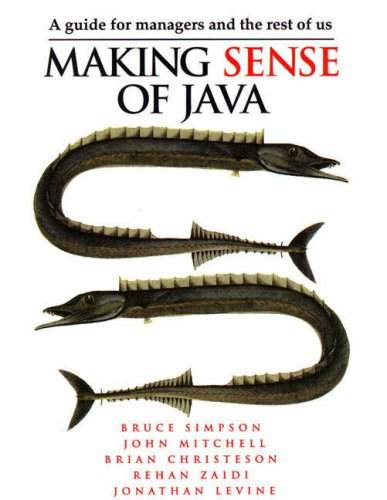 Making Sense of JAVA: A Guide for Managers and the Rest of Us