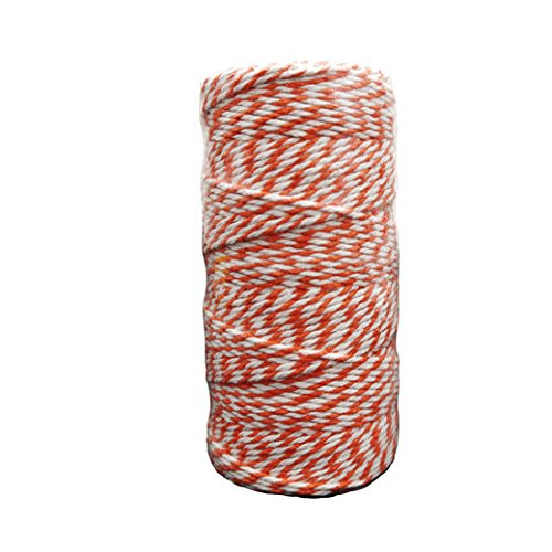 WeGlow International 35TW09 Orange Bakers Twine (110 Yards) Novelty