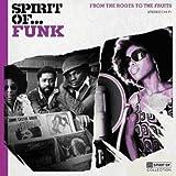 """Afficher """"Spirit of funk"""""""