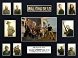 The Walking Dead Season 2 (16x12) Display