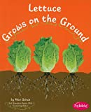 Lettuce Grows on the Ground (Pebble Books: How Fruits and Vegetables Grow)