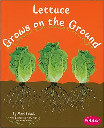 Lettuce Grows on the Ground (How Fruits and Vegetables Grow)
