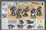 Space Marines Devastator Box Warhammer 40K