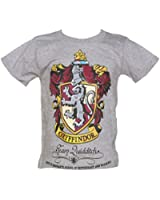 Kids Grey Marl Harry Potter Gryffindor Team Quidditch T Shirt from Fabric Flavou