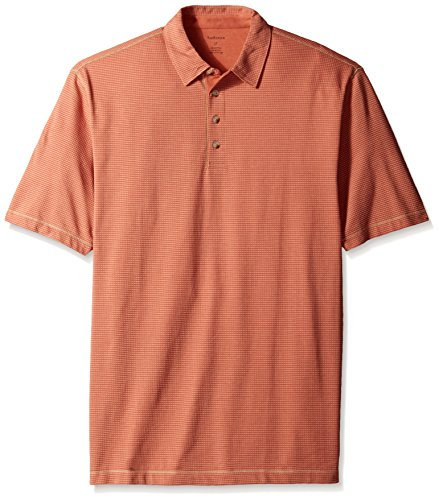 Van Heusen Men's Big-Tall Short Sleeve Popcorn Polo, Red Chutney, X-Large Tall (Chutney Popcorn compare prices)