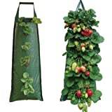 10 Hanging Strawberry Flower Bag Planters Pouch grow fruit herbs flowers UV treated