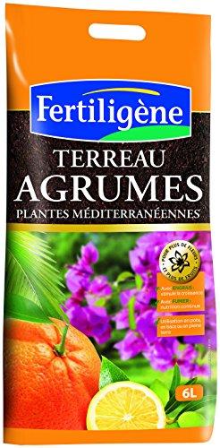 fertiligene-fag6p-terriccio-per-agrumi-piante-mediterranee-6-l