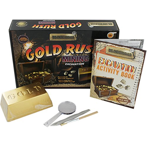 dig-and-discover-gold-rush-mining
