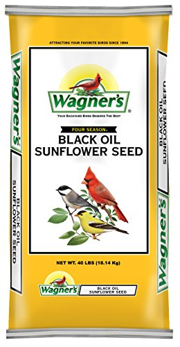 Wagner's 76029 Black Oil Sunflower Seed, 40-Pound Bag (Bird Food Shelled Sunflower Seeds compare prices)