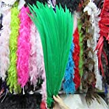 Maslin 50pcs 45-50CM/long Silver Pheasant Tail Feathers DIY Wedding Decorations Lady Amherst red Silver Chicken Feather Plume - (Color: Green) (Color: Green)