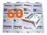 60 Advantage Spider Traps | Equiv to 120 Monitor Traps