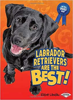 Labrador Retrievers Are the Best! (Best Dogs Ever) Library Binding