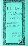 img - for The Jews of Vienna, 1867-1914: Assimilation and Identity by Marsha L. Rozenblit (1984-07-03) book / textbook / text book