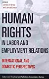img - for Human Rights in Labor and Employment Relations: International and Domestic Perspectives (LERA Research Volumes) book / textbook / text book