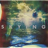 Skying (CD)by The Horrors