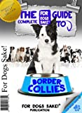 All About Border Collies - The Complete Guide