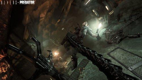 Aliens vs Predator galerija