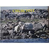 Churchill: Polar Bear Capital of the World