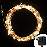 Party String Lights - Oak Leaf Indoor Décorative LED Wire Night Lights for Seasonal Decorative Christmas Home Holiday Celebration Bedroom KTV 33ft 10M 100Leds -Warm White Color - UL 5v Power Adapter