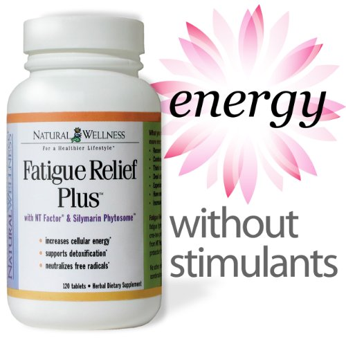 Natural Wellness Fatigue Relief Plus, 120 Tablets, Energy Without Stimulants, Nt Factor - Fatige Fighter, Increases Energy At The Cellular Level